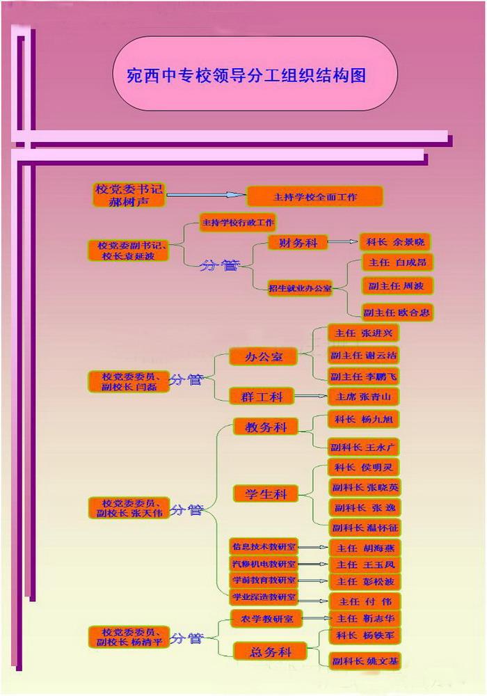 学校组织机构,领导分工结构图